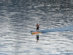 A dude stand up kayaking on Tahoe